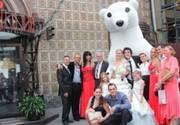 Заказать Белого медведя на праздник. Бесплатная доставка